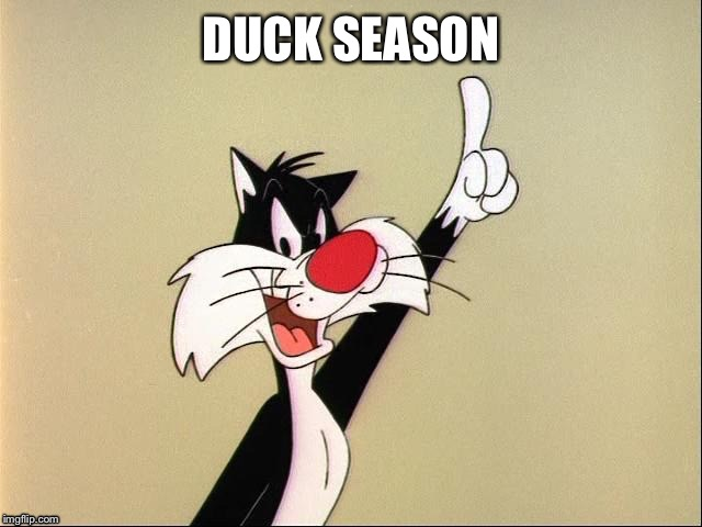 DUCK SEASON | image tagged in touche | made w/ Imgflip meme maker