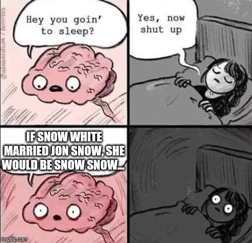 waking up brain | IF SNOW WHITE MARRIED JON SNOW, SHE WOULD BE SNOW SNOW... | image tagged in waking up brain,funny,memes,two women yelling at a cat | made w/ Imgflip meme maker