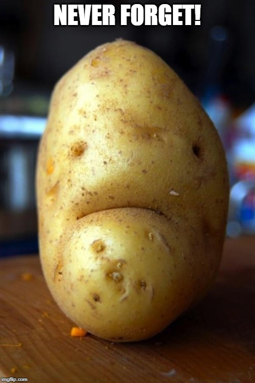 sad potato | NEVER FORGET! | image tagged in sad potato | made w/ Imgflip meme maker
