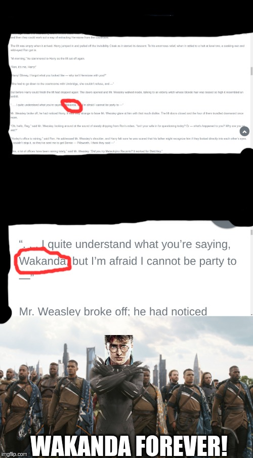 Funny Little Thing I found in HP Deathly Hallows | WAKANDA FOREVER! | image tagged in harry potter,wakanda,funny memes | made w/ Imgflip meme maker