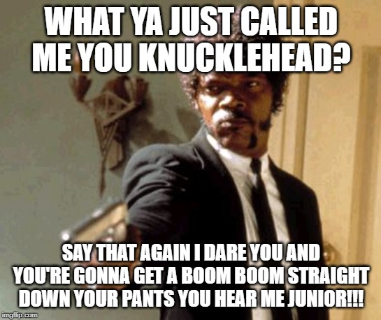 what you just called me dogg? |  WHAT YA JUST CALLED ME YOU KNUCKLEHEAD? SAY THAT AGAIN I DARE YOU AND YOU'RE GONNA GET A BOOM BOOM STRAIGHT DOWN YOUR PANTS YOU HEAR ME JUNIOR!!! | image tagged in memes,say that again i dare you | made w/ Imgflip meme maker