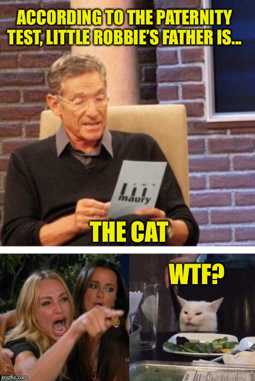 Maury breaks the news... | ACCORDING TO THE PATERNITY TEST, LITTLE ROBBIE'S FATHER IS... THE CAT WTF? | image tagged in woman yelling at cat,memes,maury lie detector,maury and woman yelling at cat | made w/ Imgflip meme maker