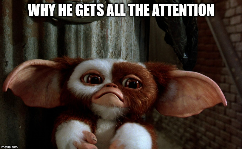 Sad Gizmo | WHY HE GETS ALL THE ATTENTION | image tagged in sad gizmo | made w/ Imgflip meme maker