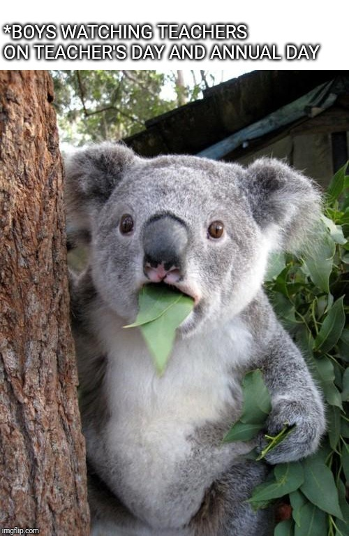 Surprised Koala |  *BOYS WATCHING TEACHERS ON TEACHER'S DAY AND ANNUAL DAY | image tagged in memes,surprised koala | made w/ Imgflip meme maker