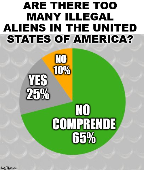 Fake poll meant for humor leftists, get a sense of humor. |  ARE THERE TOO MANY ILLEGAL ALIENS IN THE UNITED STATES OF AMERICA? NO  10%; YES 25%; NO  COMPRENDE 65% | image tagged in pie chart,politics,illegal aliens | made w/ Imgflip meme maker