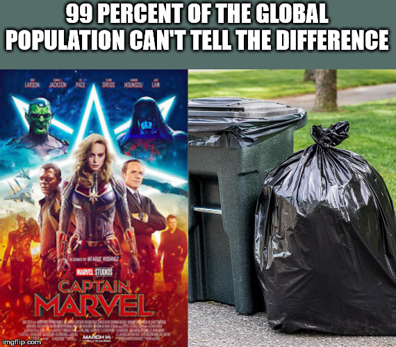 Captain Marvel Meme | 99 PERCENT OF THE GLOBAL POPULATION CAN'T TELL THE DIFFERENCE | image tagged in captain marvel,garbage | made w/ Imgflip meme maker