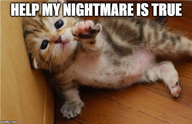 Help Me Kitten | HELP MY NIGHTMARE IS TRUE | image tagged in help me kitten | made w/ Imgflip meme maker