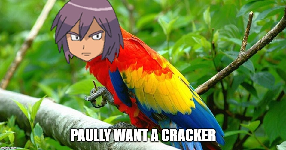 PAULLY WANT A CRACKER | made w/ Imgflip meme maker