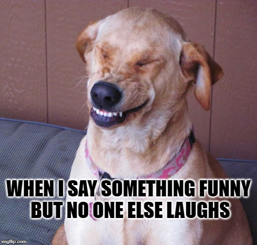 At least I laugh | WHEN I SAY SOMETHING FUNNY  BUT NO ONE ELSE LAUGHS | image tagged in laughing dog,laughing,funny,bad joke | made w/ Imgflip meme maker