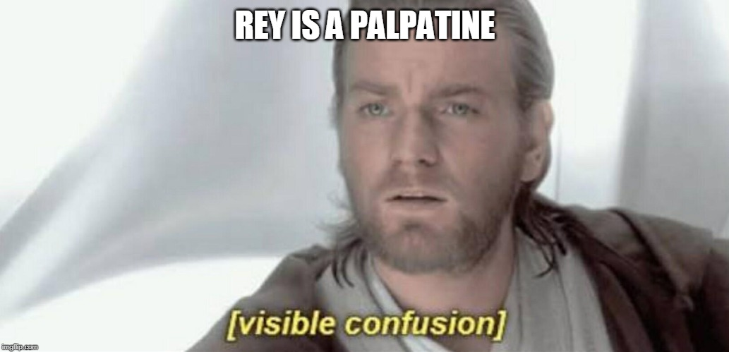 Visible Confusion | REY IS A PALPATINE | image tagged in visible confusion | made w/ Imgflip meme maker