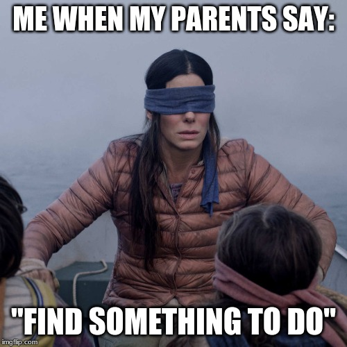 "Bird Box | ME WHEN MY PARENTS SAY: ""FIND SOMETHING TO DO"" 