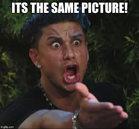 DJ Pauly D Meme | ITS THE SAME PICTURE! | image tagged in memes,dj pauly d | made w/ Imgflip meme maker