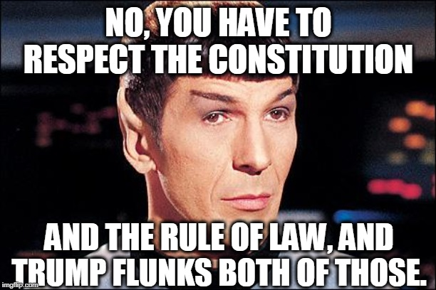 Condescending Spock | NO, YOU HAVE TO RESPECT THE CONSTITUTION AND THE RULE OF LAW, AND TRUMP FLUNKS BOTH OF THOSE. | image tagged in condescending spock | made w/ Imgflip meme maker