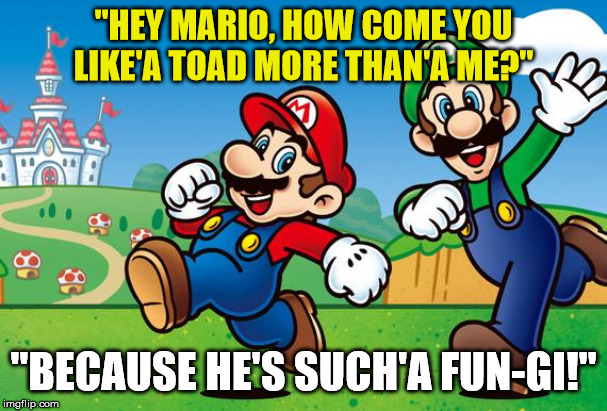 "I Toad You Not to Go There |  ""HEY MARIO, HOW COME YOU LIKE'A TOAD MORE THAN'A ME?""; ""BECAUSE HE'S SUCH'A FUN-GI!"" 