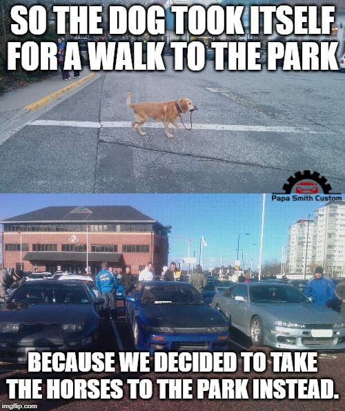 We would rather be in the Nissan section |  SO THE DOG TOOK ITSELF FOR A WALK TO THE PARK; BECAUSE WE DECIDED TO TAKE THE HORSES TO THE PARK INSTEAD. | image tagged in dog walking itself,car meme,cars,nissan,because race car,horsepower | made w/ Imgflip meme maker