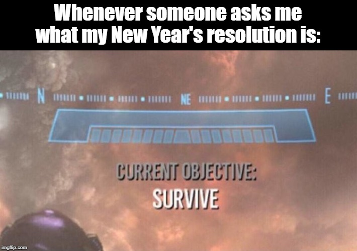 New Year's Resolution |  Whenever someone asks me what my New Year's resolution is: | image tagged in current objective survive,new years,new year resolutions,congratulations you played yourself,survival | made w/ Imgflip meme maker
