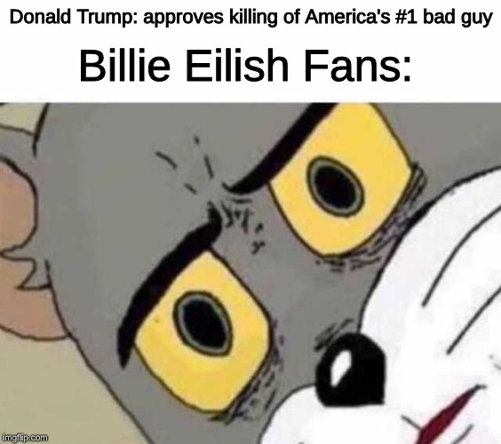 Oop~ |  Donald Trump: approves killing of America's #1 bad guy; Billie Eilish Fans: | image tagged in tom cat unsettled close up | made w/ Imgflip meme maker