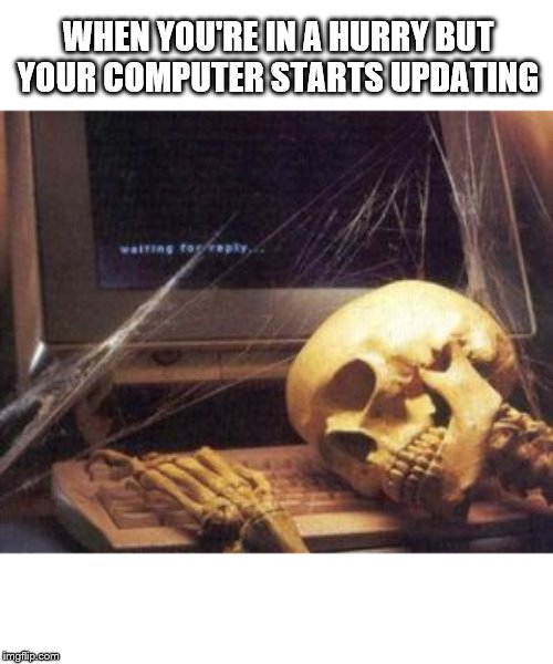 You decide to do this right now | WHEN YOU'RE IN A HURRY BUT YOUR COMPUTER STARTS UPDATING | image tagged in skeleton computer,hurry,computer,update | made w/ Imgflip meme maker