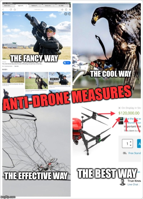Anti-drone measures | ANTI-DRONE MEASURES THE FANCY WAY THE COOL WAY THE BEST WAY THE EFFECTIVE WAY | image tagged in choose wisely | made w/ Imgflip meme maker
