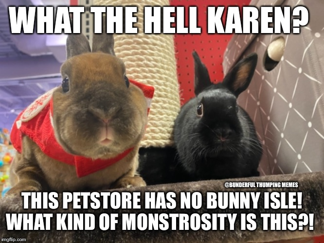monstrosity | WHAT THE HELL KAREN? THIS PETSTORE HAS NO BUNNY ISLE! WHAT KIND OF MONSTROSITY IS THIS?! @BUNDERFUL THUMPING MEMES | image tagged in bugs bunny no,bunny,rabbit | made w/ Imgflip meme maker