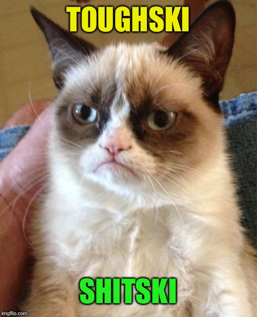 Grumpy Cat Meme | TOUGHSKI SHITSKI | image tagged in memes,grumpy cat | made w/ Imgflip meme maker