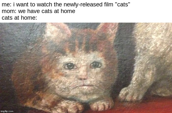 "me: i want to watch the newly-released film ""cats"" mom: we have cats at home cats at home: 