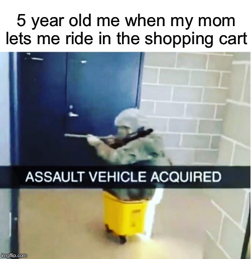 5 year old me when my mom lets me ride in the shopping cart | image tagged in assault,military,shopping cart,funny,memes | made w/ Imgflip meme maker