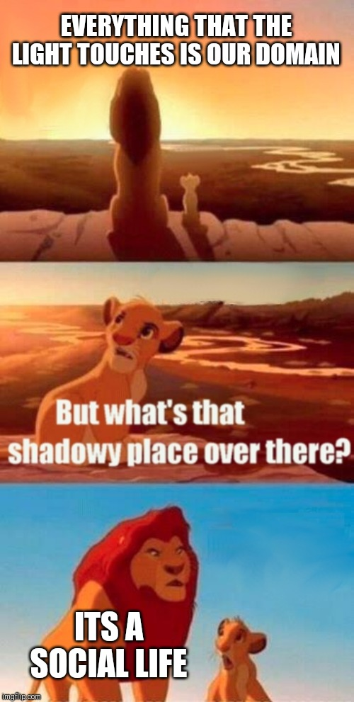 Simba Shadowy Place |  EVERYTHING THAT THE LIGHT TOUCHES IS OUR DOMAIN; ITS A SOCIAL LIFE | image tagged in memes,simba shadowy place | made w/ Imgflip meme maker