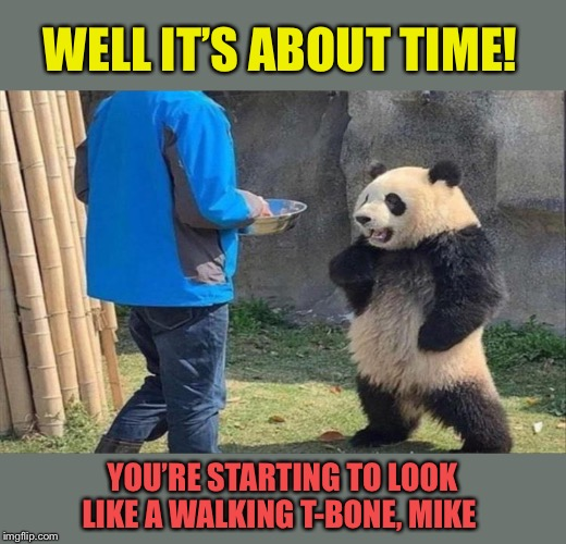 Better pick up the pace Mike. |  WELL IT'S ABOUT TIME! YOU'RE STARTING TO LOOK LIKE A WALKING T-BONE, MIKE | image tagged in panda,dinner,zoo,memes,funny | made w/ Imgflip meme maker