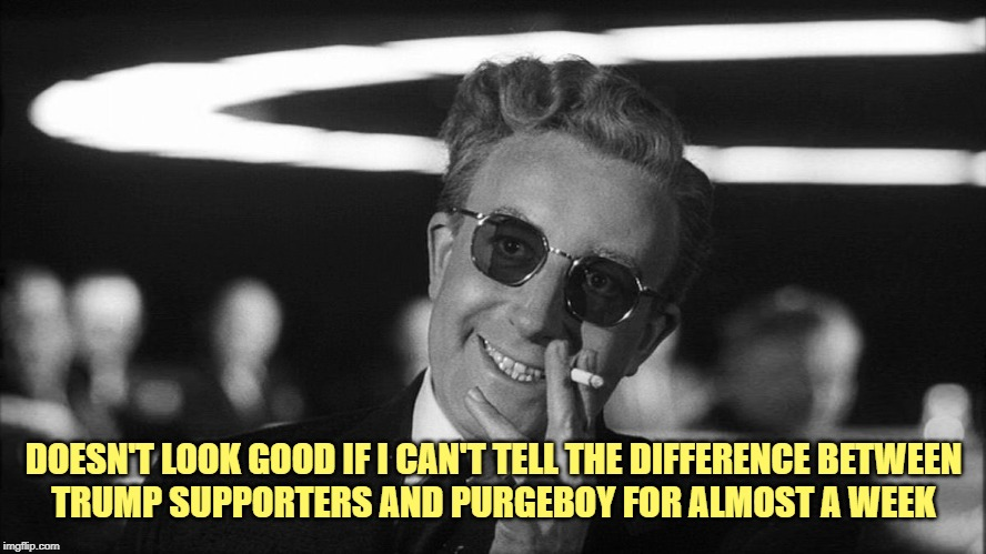 Doctor Strangelove says... | DOESN'T LOOK GOOD IF I CAN'T TELL THE DIFFERENCE BETWEEN TRUMP SUPPORTERS AND PURGEBOY FOR ALMOST A WEEK | image tagged in doctor strangelove says,soleimani,iran,trump supporters,purgeboy | made w/ Imgflip meme maker