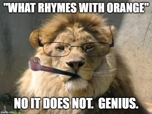 "No it does not.  Literally. |  ""WHAT RHYMES WITH ORANGE""; NO IT DOES NOT.  GENIUS. 