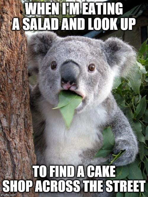 Surprised Koala |  WHEN I'M EATING A SALAD AND LOOK UP; TO FIND A CAKE SHOP ACROSS THE STREET | image tagged in memes,surprised koala | made w/ Imgflip meme maker