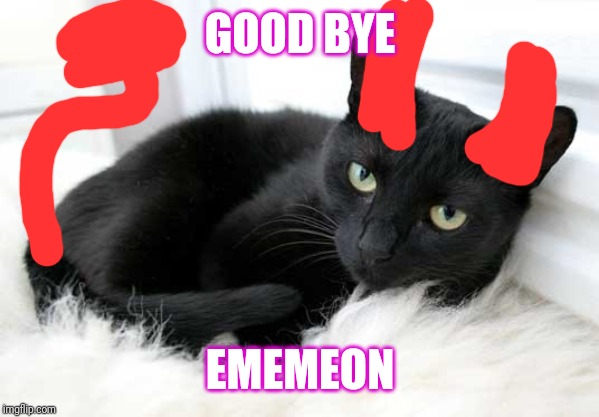 black cat |  GOOD BYE; EMEMEON | image tagged in black cat | made w/ Imgflip meme maker
