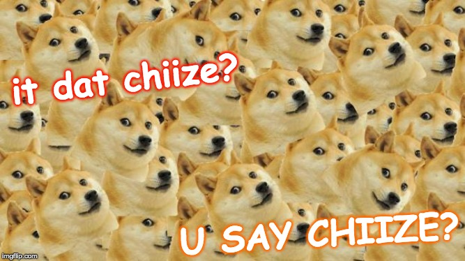 Multi Doge | it dat chiize? U SAY CHIIZE? | image tagged in memes,multi doge | made w/ Imgflip meme maker