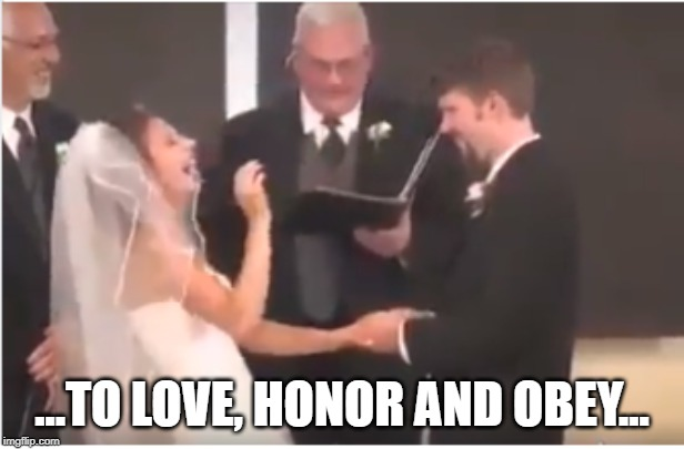 Love Honor Obey | ...TO LOVE, HONOR AND OBEY... | image tagged in merger wedding sacrament alliance amalgamation association confederation consortium coupling espousal link match mating matrimon | made w/ Imgflip meme maker