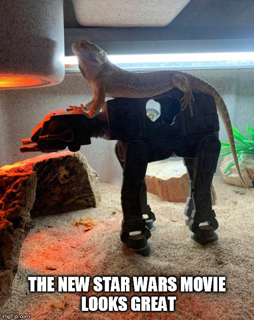 THE NEW STAR WARS MOVIE  LOOKS GREAT | image tagged in star wars,movie,great | made w/ Imgflip meme maker