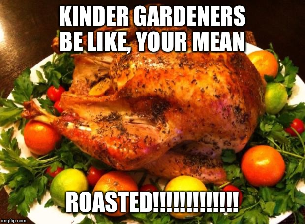 Roasted turkey | KINDER GARDENERS BE LIKE, YOUR MEAN ROASTED!!!!!!!!!!!!! | image tagged in roasted turkey | made w/ Imgflip meme maker