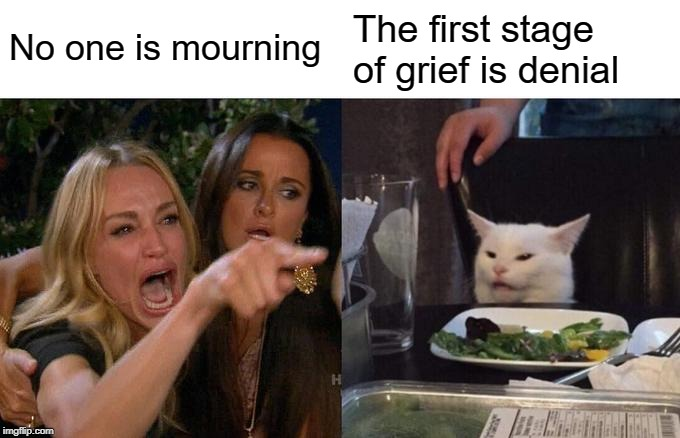 Woman Yelling At Cat Meme | No one is mourning The first stage of grief is denial | image tagged in memes,woman yelling at cat | made w/ Imgflip meme maker
