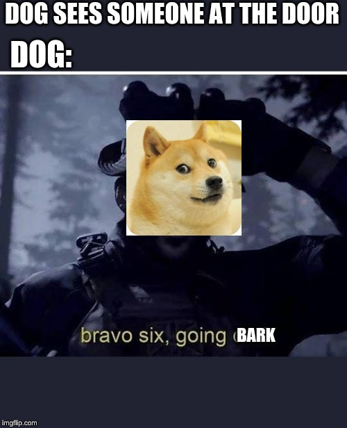 Bravo six going dark | DOG SEES SOMEONE AT THE DOOR DOG: BARK | image tagged in bravo six going dark | made w/ Imgflip meme maker