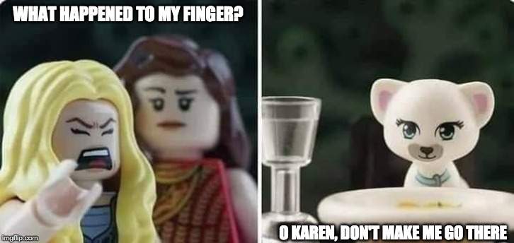 Woman yelling at cat ~ | WHAT HAPPENED TO MY FINGER? O KAREN, DON'T MAKE ME GO THERE | image tagged in cat,woman,yelling | made w/ Imgflip meme maker