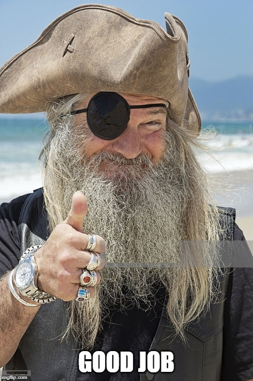 PIRATE THUMBS UP | GOOD JOB | image tagged in pirate thumbs up | made w/ Imgflip meme maker