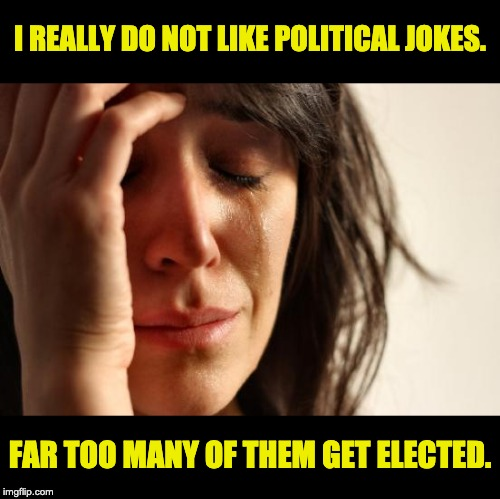First World Problems | I REALLY DO NOT LIKE POLITICAL JOKES. FAR TOO MANY OF THEM GET ELECTED. | image tagged in memes,first world problems | made w/ Imgflip meme maker