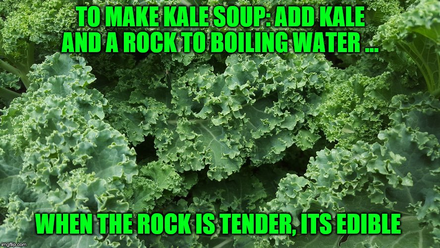kale |  TO MAKE KALE SOUP: ADD KALE AND A ROCK TO BOILING WATER ... WHEN THE ROCK IS TENDER, ITS EDIBLE | image tagged in kale | made w/ Imgflip meme maker