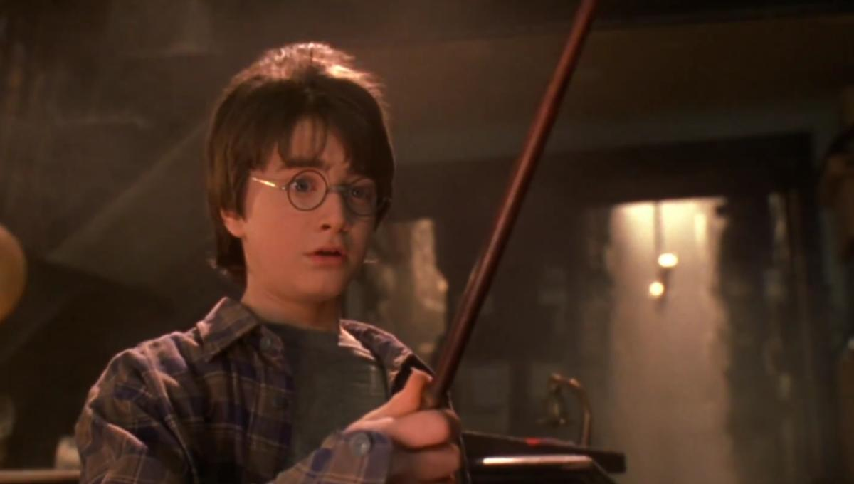 Harry Potter And His Wand Blank Template Imgflip