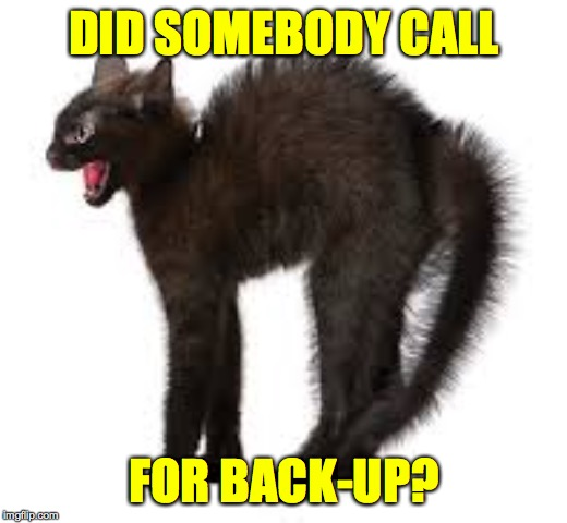 Black is the new black'n'white  ( : | DID SOMEBODY CALL FOR BACK-UP? | image tagged in memes,cats,back-up | made w/ Imgflip meme maker