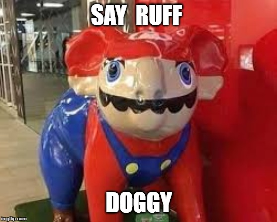 Bootleg mario |  SAY  RUFF; DOGGY | image tagged in bootleg mario | made w/ Imgflip meme maker