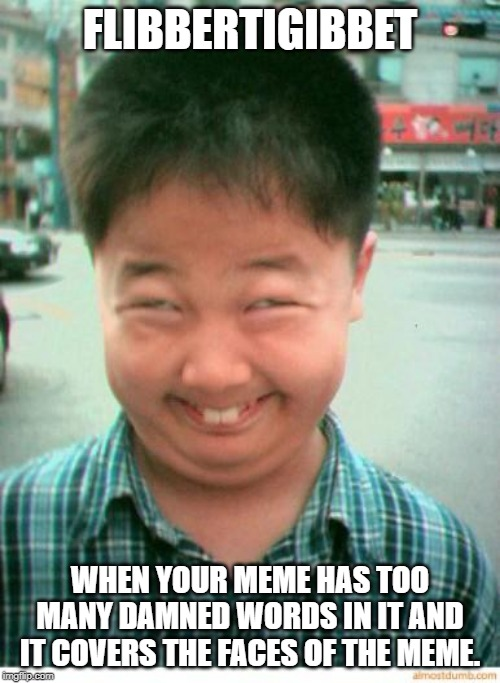 funny asian face | FLIBBERTIGIBBET WHEN YOUR MEME HAS TOO MANY DAMNED WORDS IN IT AND IT COVERS THE FACES OF THE MEME. | image tagged in funny asian face | made w/ Imgflip meme maker