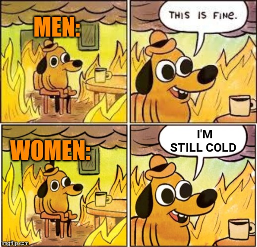 MEN: I'M STILL COLD WOMEN: | image tagged in this is fine,burning dog,ice queen's,close that window you're letting the heat out,hold and cold | made w/ Imgflip meme maker