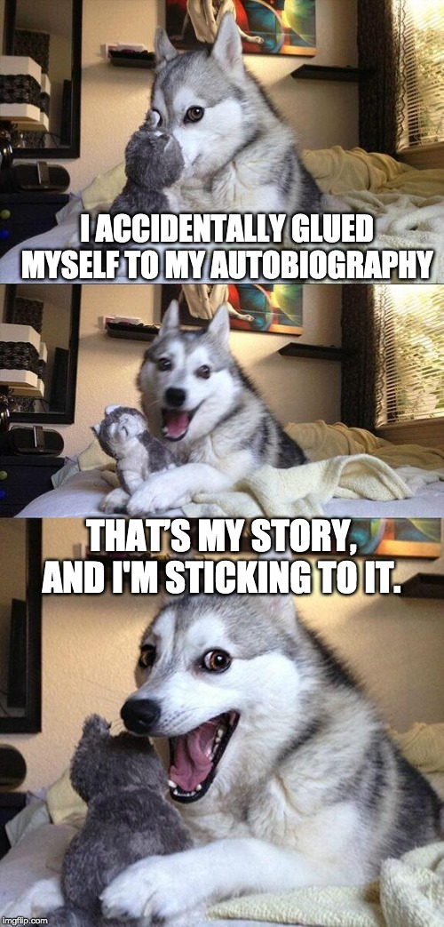 A sticky situation |  I ACCIDENTALLY GLUED MYSELF TO MY AUTOBIOGRAPHY; THAT'S MY STORY, AND I'M STICKING TO IT. | image tagged in memes,bad pun dog,writers,groan | made w/ Imgflip meme maker
