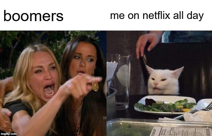 Woman Yelling At Cat Meme | boomers me on netflix all day | image tagged in memes,woman yelling at cat | made w/ Imgflip meme maker
